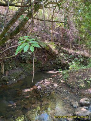 20210228 Entrain Trail RiviereMat 034