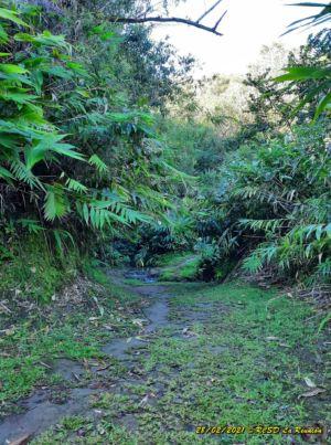 20210228 Entrain Trail RiviereMat 043