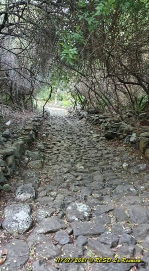 20210711 Entrain Trail StPaul Bellemene 36